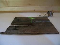 鉄・木・石の展覧会を見て、土の展覧会を作る会